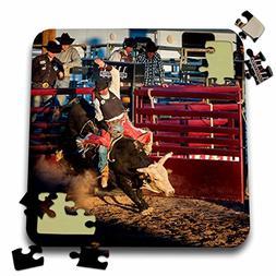 Danita Delimont - Cowboys - Arizona, Buckeye, Hellzapoppin A