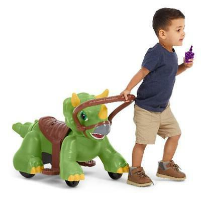 Dino Fun Outdoor Indoor